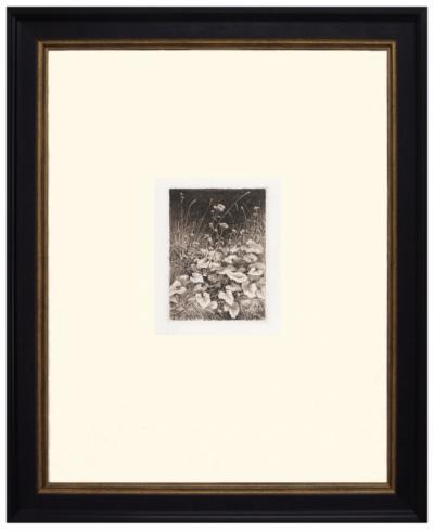 Офорт «Белые цветы»