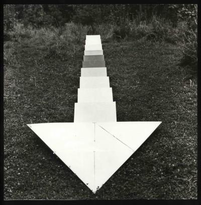 №4 Фото объект из серии артефакты «Вектор поляны»