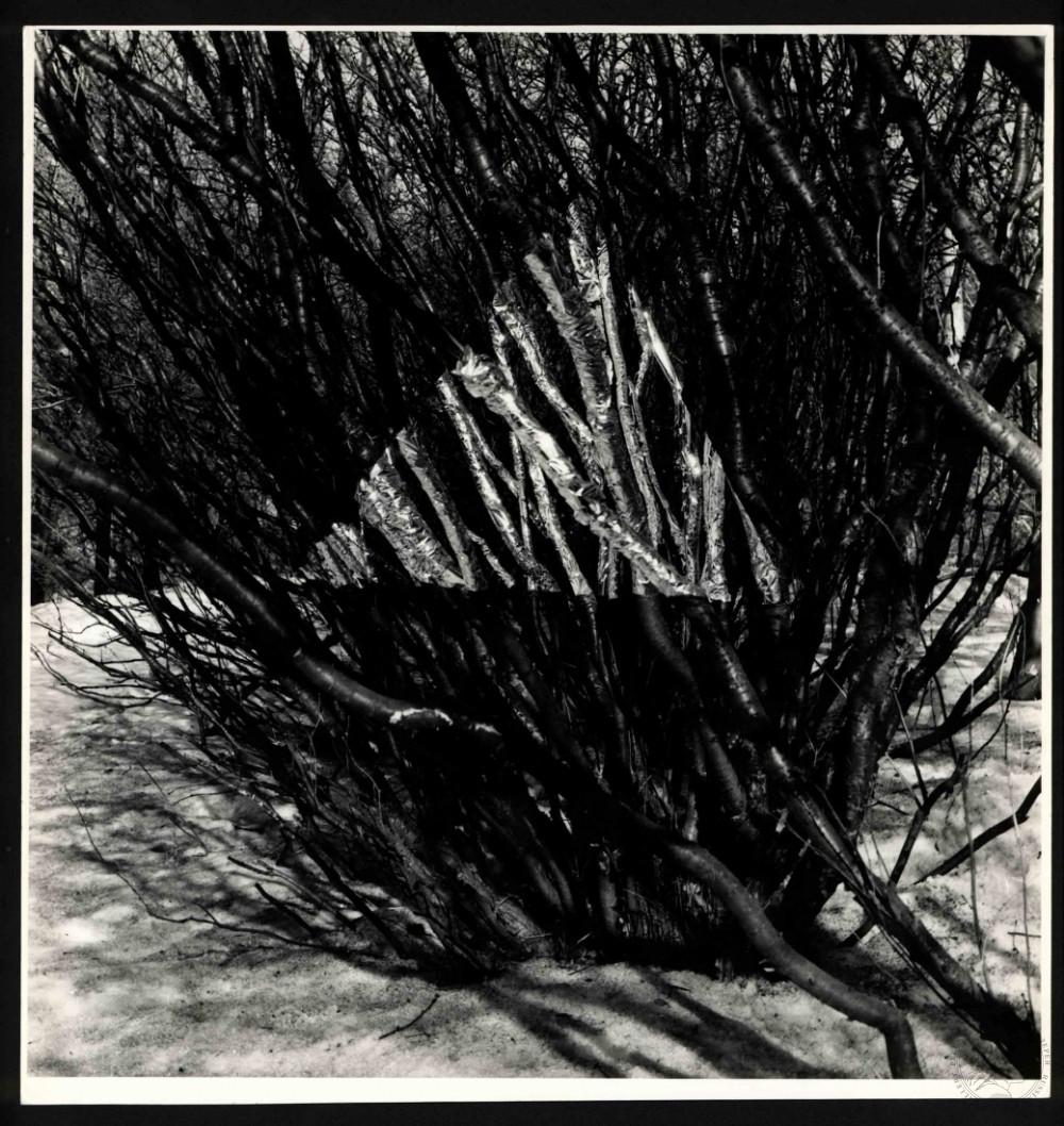 №5 Фото объект. Артефакты из серии «Вывернутая перспектива» или «Выстраивание знака»