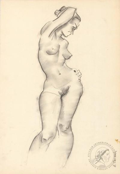 Рисунок «Обнаженная модель»