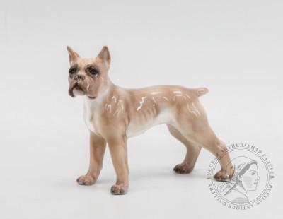 Фигурка фарфоровая собаки «Боксёр». Дания, фарфоровая фабрика Dahl Jensen