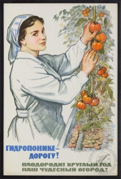 Плакат «Гидропонике — дорогу! Плодородит круглый год наш чудесный огород!»