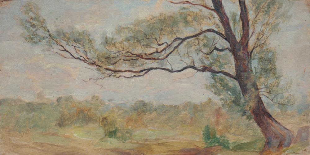 Этюд «Летний пейзаж с деревом»