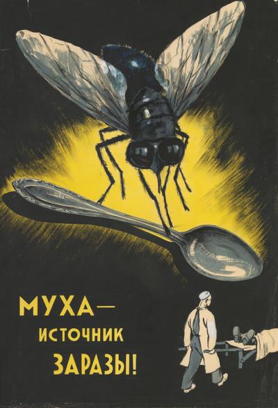 Оригинал-макет плаката «Муха — источник заразы!»