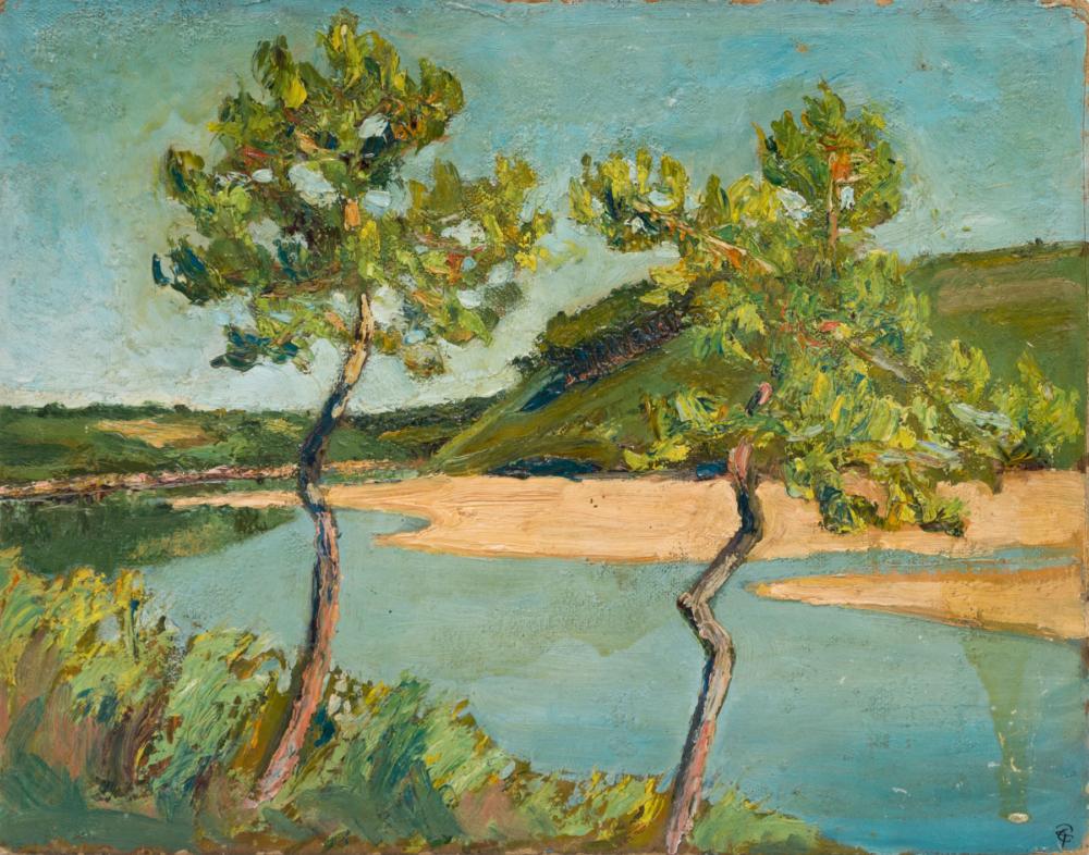 Деревья на фоне песчаного берега