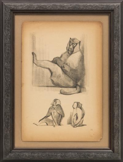 Литография «Павианы»