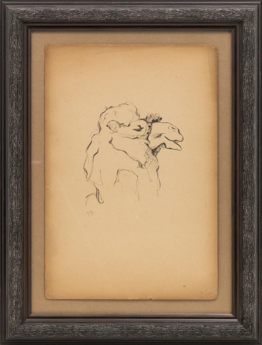 Литография «Верблюд»