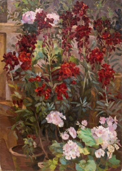 Покаржевский П.Д. Натюрморт с комнатными цветами